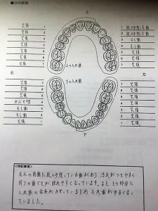 歯科カルテ