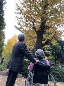 2018.11.18散歩_181121_0020
