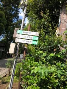 20190612鎌倉&江ノ島_190613_0061